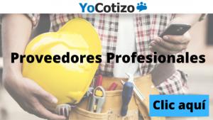 Servicios profesionale